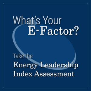 ELI-Assessment
